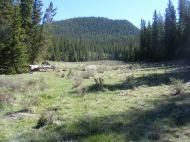Small side meadow off of Indian Creek, Lost Creek Wilderness