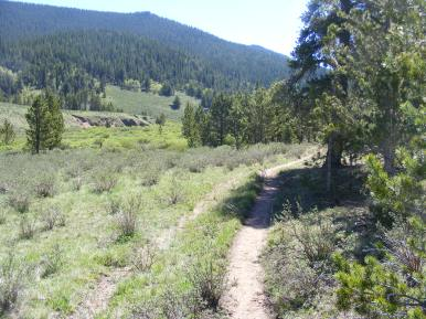 Connector trail between the Brookside-McCurdy and Wigwam Trails