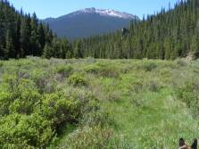 Hiking along the Wigwam Trail, below the forks of Lost Creek