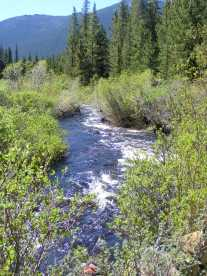 Rapidly flowing Lost Creek