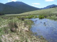 Unnamed tributary to Lost Creek, adjacent to the Wigwam Trail, overflowing with melt water