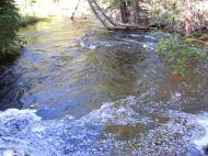 Lost Creek below East Lost Park at high water