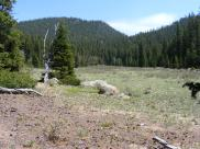 A side meadow off of Indian Creek