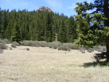 From camp, looking at a knoll of granite to the west of Bison Pass