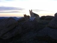 Leah and Draco on Bison Peak
