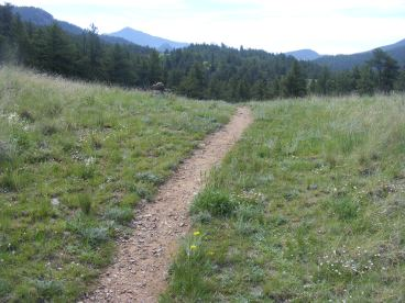 Ute Creek Trail, Pike National Forest