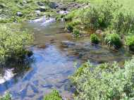 Wild Cherry Creek emanating from the spring below the moraine which the drainage's water passes underneath