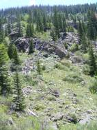 Typical scene hiking in the Rocky Mountains, here along Wild Cherry Trail in the Sangre de Cristo Mountains