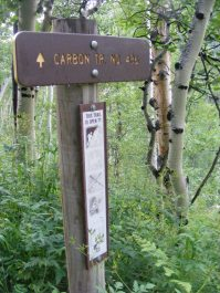 Signage for the Carbon Trail