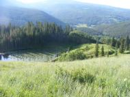 From the southern shoulder of Mount Axtell, Carbon Creek's basin