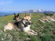 Draco and Leah on Mount Axtell