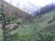 Looking down the East Fork of Alpine Gulch