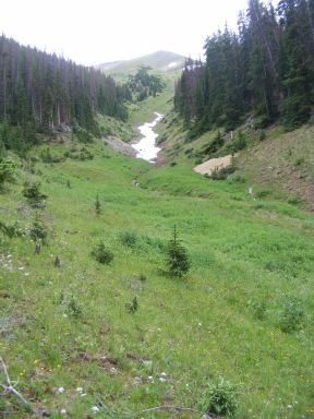 A snow plug in a tributary to the East Fork of Alpine Gulch