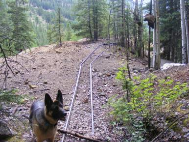 Leah studying the old mine on Alpine Gulch