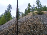 Tailing pile left untreated on Alpine Gulch