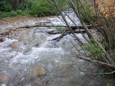 Alpine Gulch... this water is moving