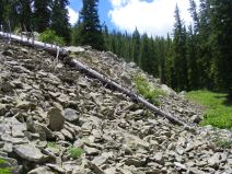 Talus slope on the north side of Gibson Ridge