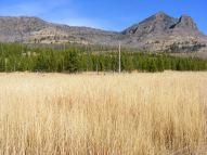 Grass and conifers below The Thunderer on Cache Creek in Yellowstone National Park
