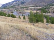 Cache Creek in Yellowstone National Park, low Autumnal runoff