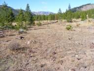 Flats along Cache Creek