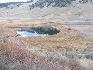 Blacktail Deer Ponds under Mount Everts