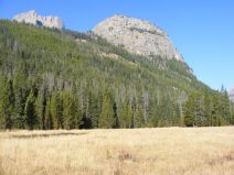 Large meadow on the upper Green River in the Wind River Range