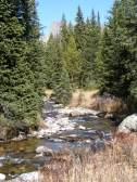 Looking upstream on Trail Creek