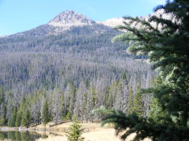 Peak of granite with a slope of coniferous forest above the Upper Green River Lake