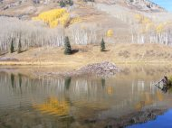 A beaver lodge in the largest of the Beaver Ponds, only one grove of aspen retaining its leaves