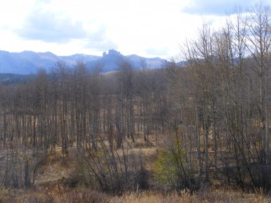 The Castles of the West Elk Mountains