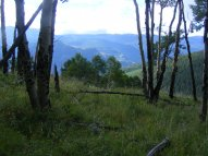 Looking out over the Lake Fork of the Gunnison River from Slaughterhouse Gulch