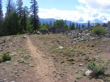 The Crystal Lake Trail near Hay Lake
