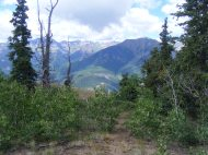 The San Juan Mountains seen from the divide between Slaughterhouse Gulch and Crystal Creek