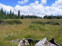 Plateau near Crystal Lake