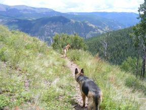 Draco and Leah on the Crystal Lake Trail above Slaughterhouse Gulch, looking at the Lake Fork of the Gunnison River