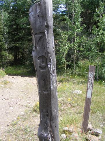 The Rio Grande National Forest marks their trail using these poles with emblazoned numbers