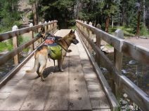 Draco and Leah on the bridge over Elk Creek near the trialhead