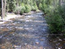 Elk Creek near the trailhead
