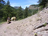 Leah and Draco on Elk Creek Trail
