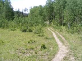 Elk Creek Trail just above the Notch Trail