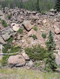 Rocky gulch where Elk Creek has cut down through the earthen dam that created Second Meadows