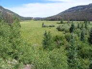 Second Meadows, looking east