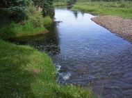 Elk Creek in Second Meadows