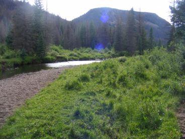 Looking upstream Elk Creek towards the unnamed southern fork