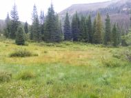 The Elk Creek drainage in the South San Juan Wilderness
