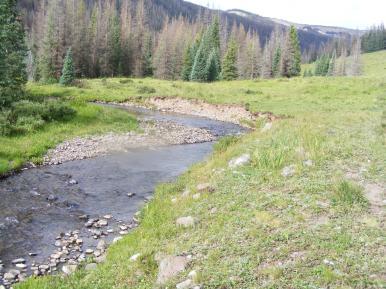 Elk Creek in Third Meadows