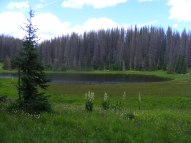 A smaller Dipping Lakes in the South San Juan Wilderness of the Rio Grande National Forest