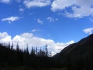 Third Meadows in silhouette