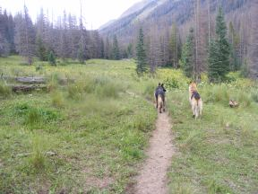 Leah and Draco on the Elk Creek Trail as we head back to camp