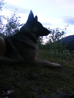 Leah in camp, early morning